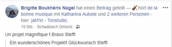 brigitte-nagel-kommentar-facebook-steffi-kutil-wir-sind-europa